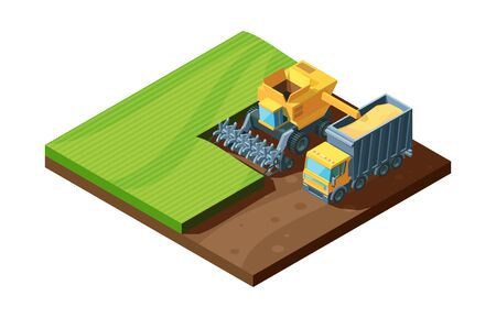 Harvesting isometric illustration. Combine vibrant harvester and agricultural machine collect wheat in field, concept farm natural farming. Agricultural vector cartoon industry.