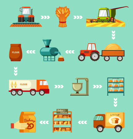 Grain harvesting and baking steps set. Sowing wheat and green harvester mowing and tractor trailer carrying golden pile rye transporting flour and truck delivery baked goods store. Vector production. 向量圖像