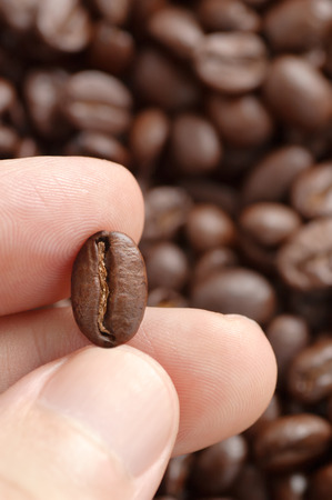 three fingers: Three fingers showing roasted coffee bean with blurred other beans scattered behind Stock Photo