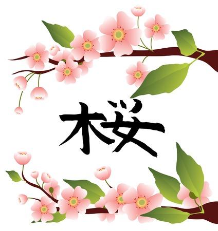 sakura branches with the hieroglyph  Vector