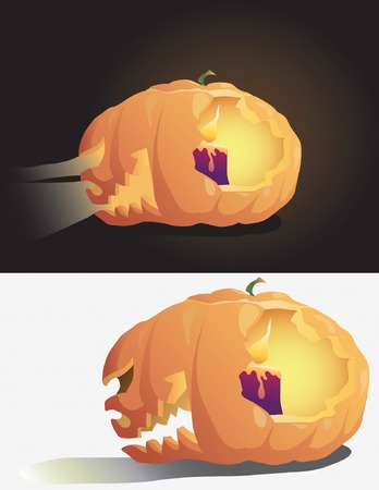 Pumpkin on the white and black background  Illustration