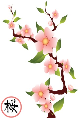 japanese apricot: sakura branches with the hieroglyph sakura