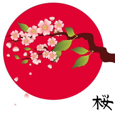 Green branch of an Oriental cherry Stock Vector - 8655599