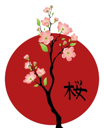 japanese style: Sakura branches with the hieroglyph sakura Illustration