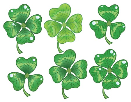 four objects: Clovers leaf  Illustration