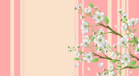 Sakura Stock Vector - 9893958