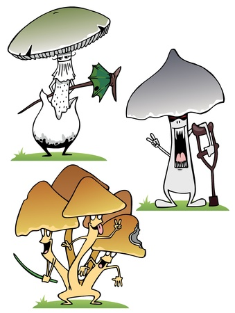 uncultivated: A set of different poisonous mushrooms in the grass Illustration
