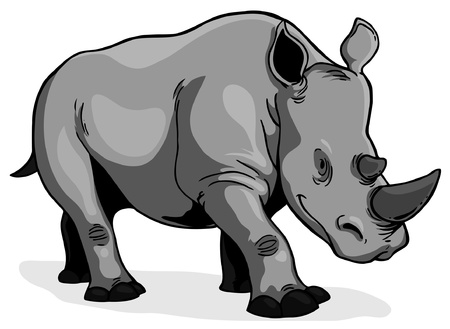 kenya: Rhinoceros on a white background