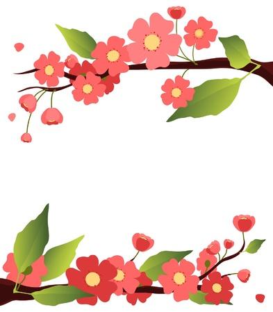 zen garden: sakura