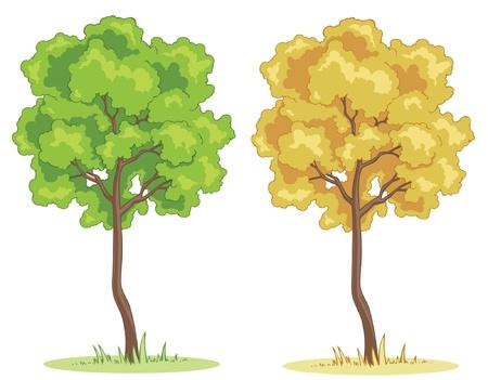 grass cartoon: Illustration of a cartoon tree on a patch of grass.