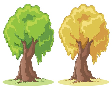 tree bark: Illustration of a cartoon tree on a patch of grass.