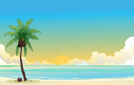 Coconut palm tree and the blue sea  Vector