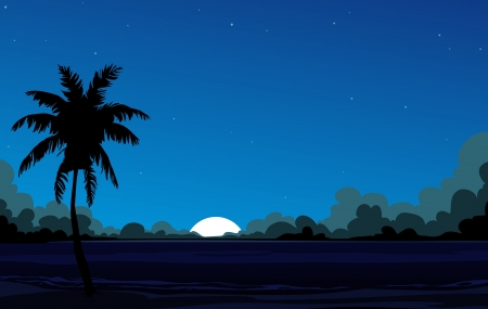 Coconut palm tree and the star sky Stock Vector - 18169270