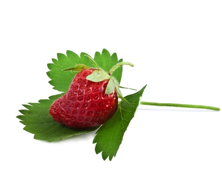 Strawberries with leaves  Isolated on a white background   Stock Photo - 20853386