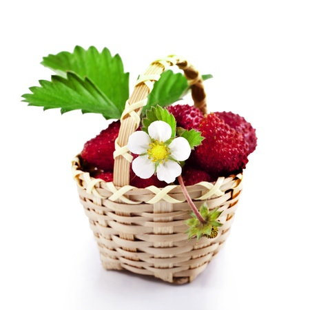 Fresh wild strawberries in the basket isolated on white  Stock Photo - 20853389