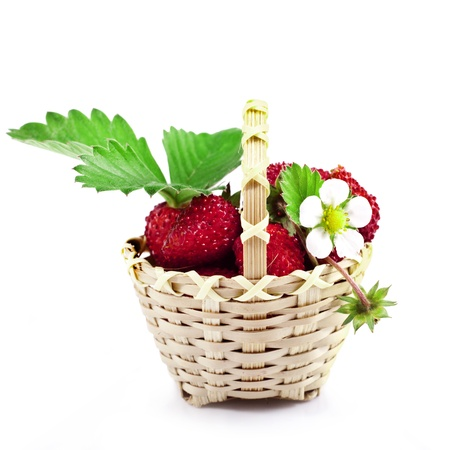Fresh wild strawberries in the basket isolated on white  Stock Photo - 20853390