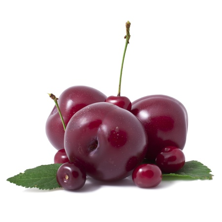 cherries and plums   isolated on a white background Stock Photo - 21005571