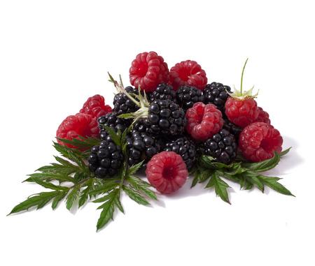 Raspberry with blackberry  Stock Photo - 23072967
