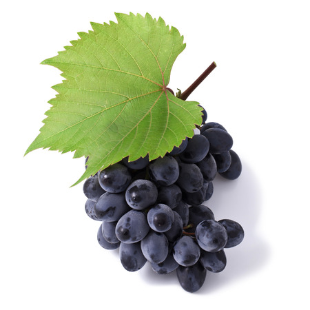 Grape with leaves Stock Photo - 23072969