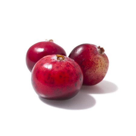 Cranberries isolated on white background Stock Photo - 23074497