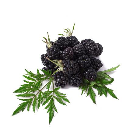 Sweet blackberries isolate on white Stock Photo