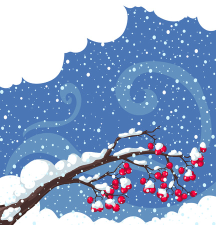 Winter background with snow-covered  tree branches, rowan berry Vector