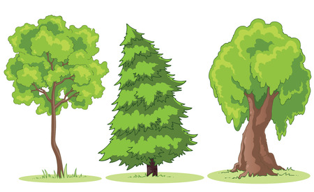 tall tree: Illustration of a cartoon trees on a patch of grass