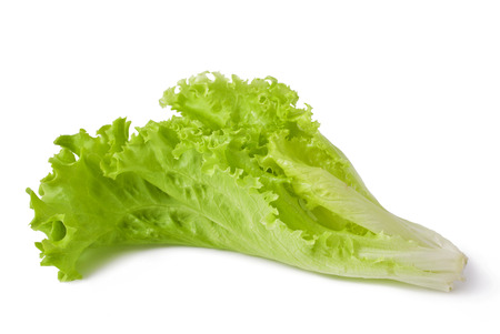 wet lettuce on the white