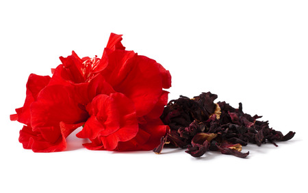 Hibiscus tea and flower isolated on white