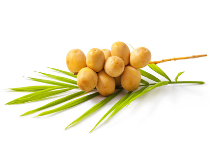 A bunch of yellow raw dates with palm leaf on white background 版權商用圖片