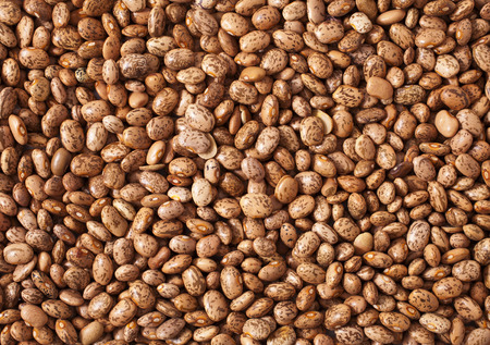 background of pinto beans photo