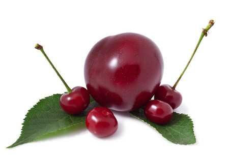 sappy: cherries and plums isolated on a white background.