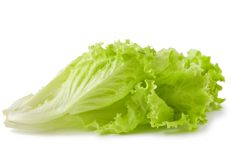 wet lettuce on the white background