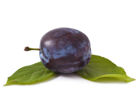 purple leaf plum: One plum with leaves on white background Stock Photo