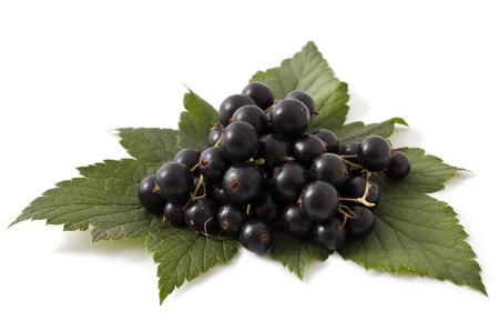 Fresh black currant isolated on white background