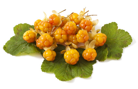 chicouté: cloudberry with leaves isolated on white background
