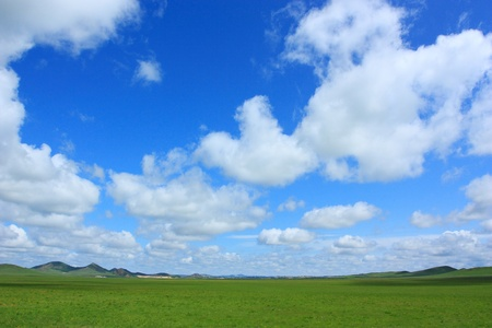 landscape of grassland with cloudy sky photo