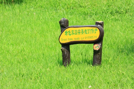 a signpost in green meadow photo