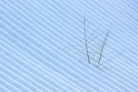 Lines in the snow made by a snowmobile,that was on the roof of buildings.Two branchs on the roof. Stock Photo