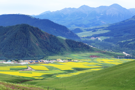 landcape of mountain in summer,Chinese