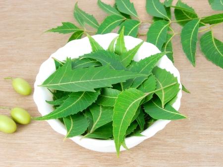 neem: Neem leaves.