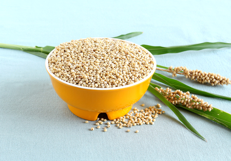 Healthy food sorghum and sorghum leaves and seed heads. Stock Photo - 79191198