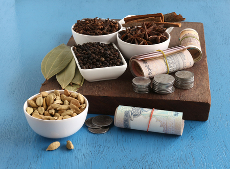 Agricultural income, from spices like cinnamon, pepper, cardamom, cloves, star anise and bay leaves, concept highlighted with Indian rupees, which are rolled, and stacks of coins.