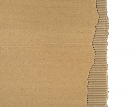 pasteboard: piece of pasteboard