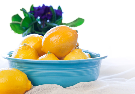 lemony: Bright yellow Meyer Lemons in a bowl with Primrose flowers in the background. Stock Photo