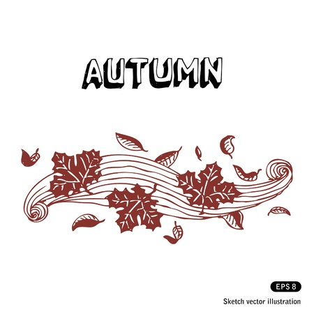 Hand drawn autumn leaves and wind on white background Stock Vector - 13747361