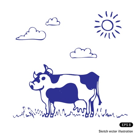 Cow grazes. Hand drawn vector sketch illustration   Vector
