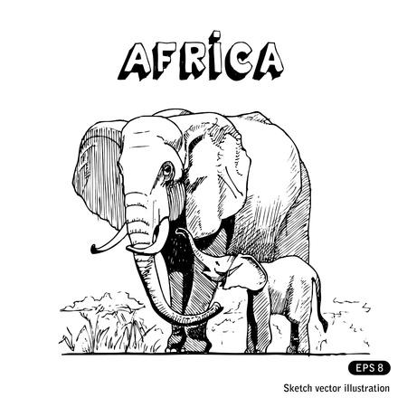 sur: Los elefantes en la sabana africana dibujados a mano aislado en blanco