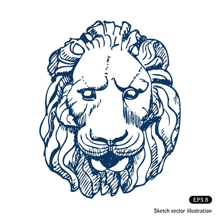 Lion s head  Hand drawn isolated on white Vector