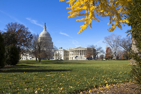 US Capitol Building, Washington DC photo